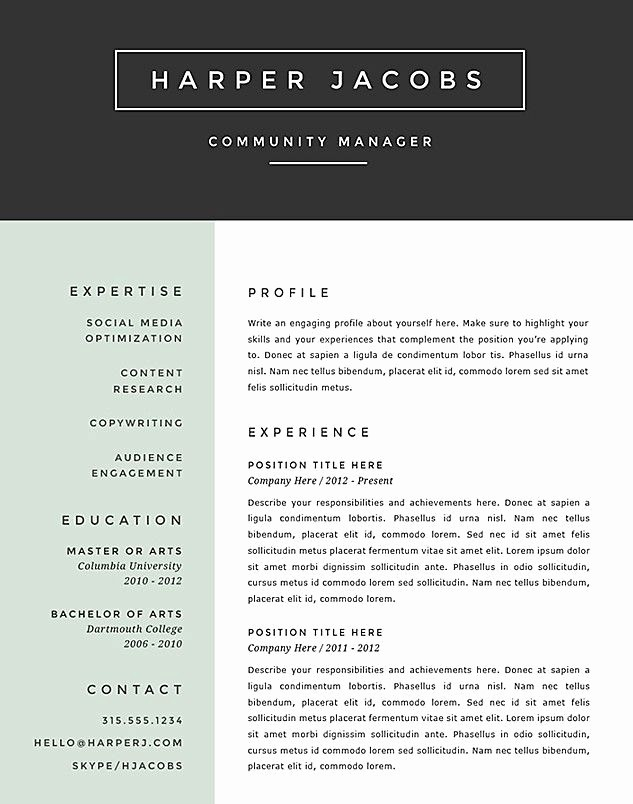 Best Free Resume Templates 2016 Lovely Best Resume format 2017 Template