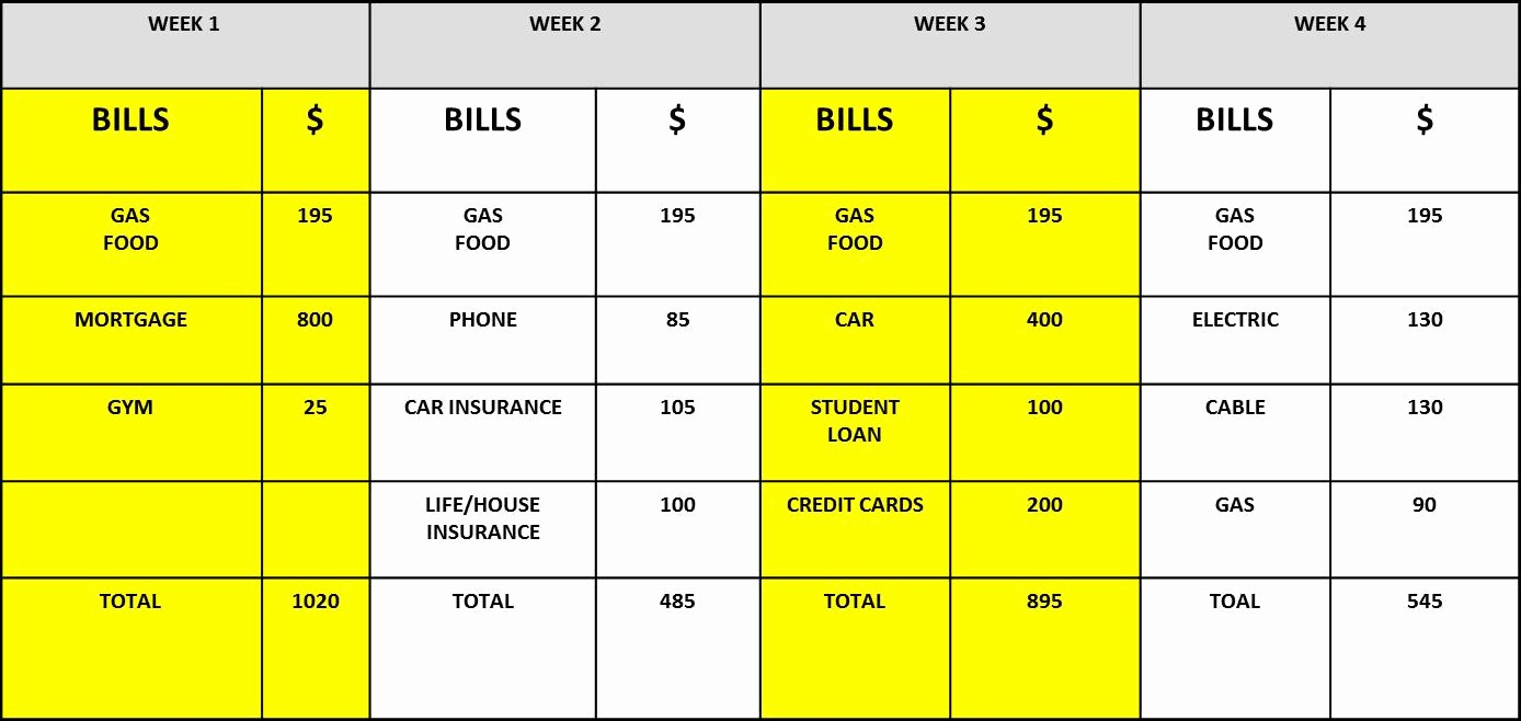 Bi Weekly Bill Pay Template Awesome Loan Payment Administration