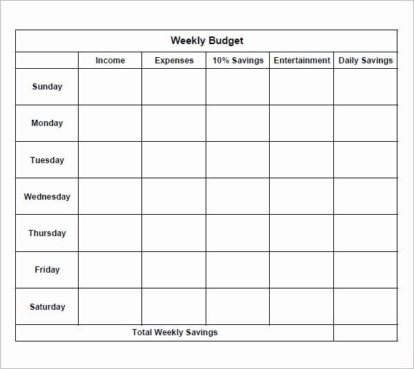 Bi Weekly Bill Pay Template Inspirational 7 Bi Weekly Bud Template