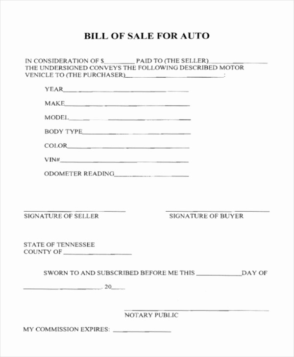 Bill Of Sale Blank Document Beautiful Sample Bill Of Sale Auto form 8 Free Documents In Pdf