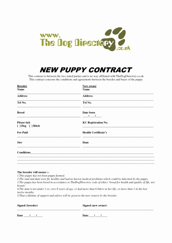 Bill Of Sale Contract Template Beautiful Puppy Bill Sale