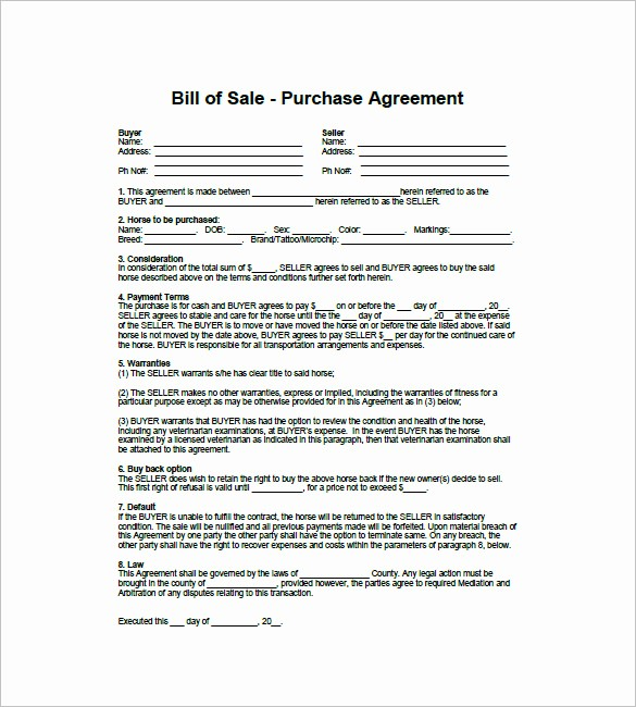 Bill Of Sale Contract Template Elegant Horse Bill Of Sale – 8 Free Sample Example format