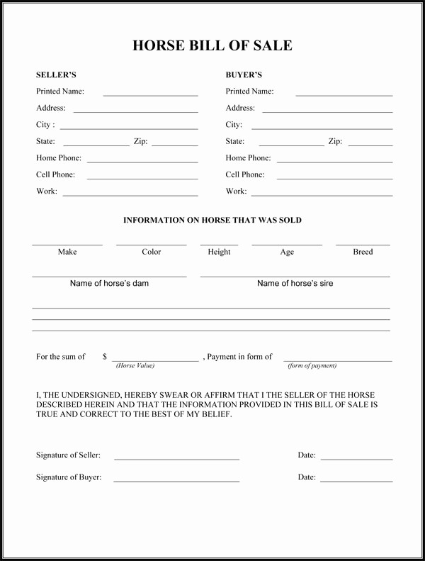 Bill Of Sale Example form Beautiful Horse Bill Sale form