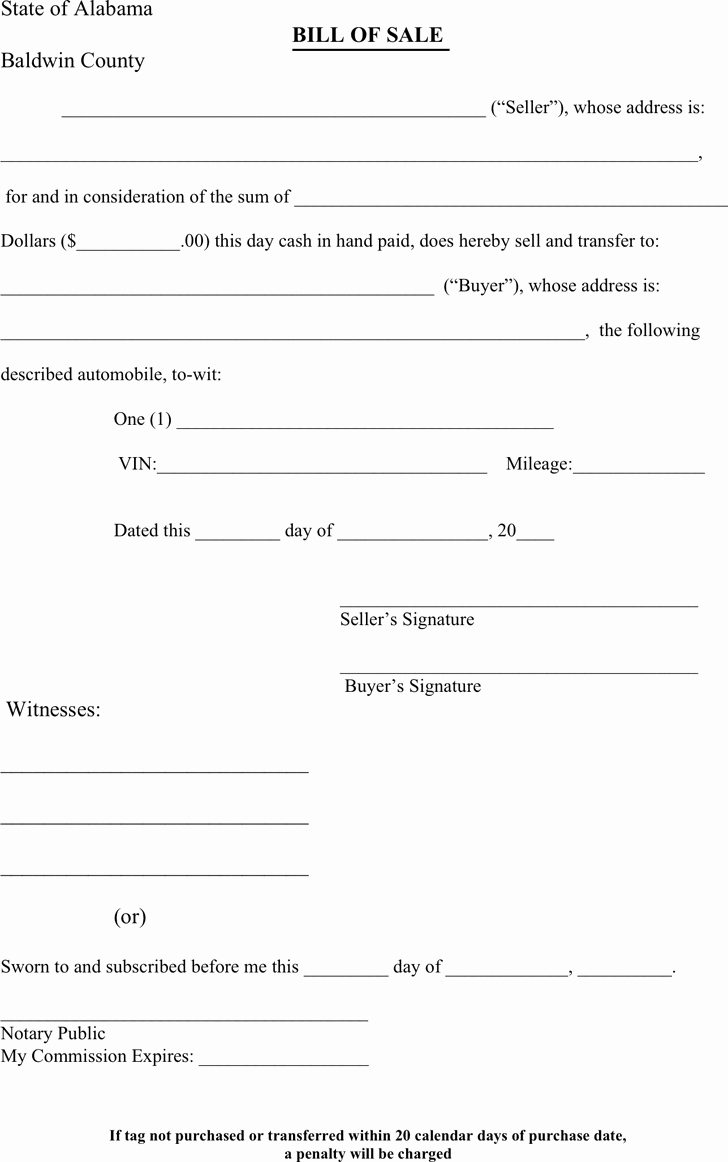 Bill Of Sale form Template Beautiful 6 Bill Sale forms – Word Templates