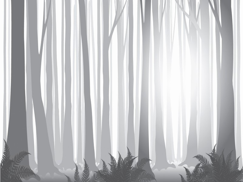 Black and White Powerpoint Template Luxury Foggy forest Powerpoint Templates Black Nature White