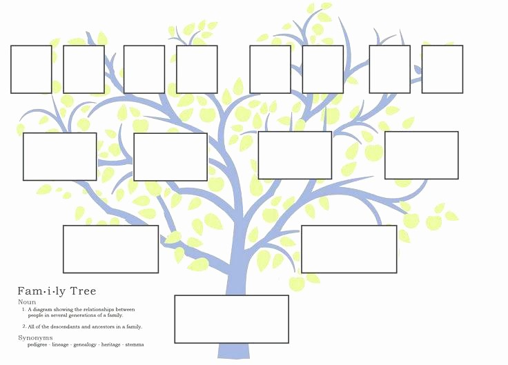 Blank Medical History form Printable Unique Blank Printable Family Tree Lank Template Free History