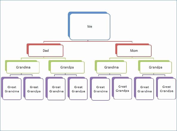 Blank P&l form Elegant Genogram Template for Mac New Family Genogram Template