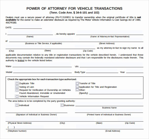 Blank P&l form Inspirational 10 Blank Power Of attorney forms to Download
