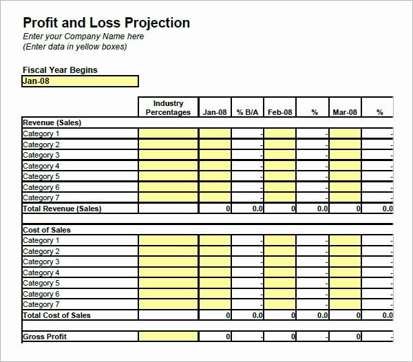 Blank P&l Statement Beautiful 19 Sample Profit and Loss Templates