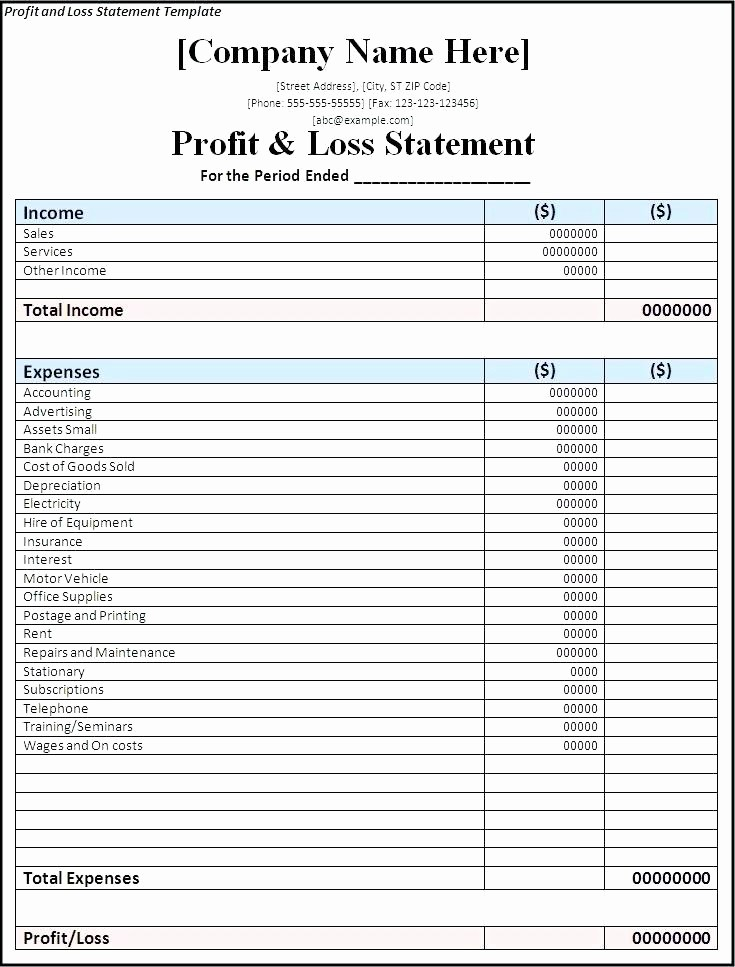 Blank P&l Statement New P L Statement Template Profit and Loss form Free Statement