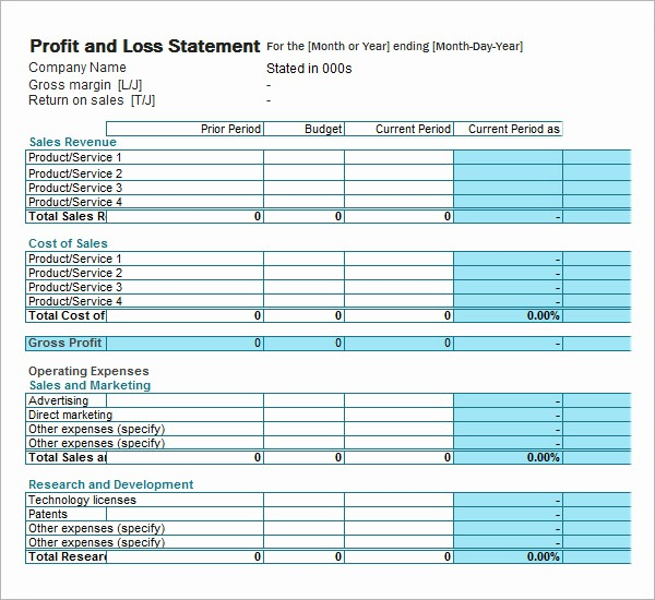 Blank Profit and Loss Template Fresh 19 Sample Profit and Loss Templates