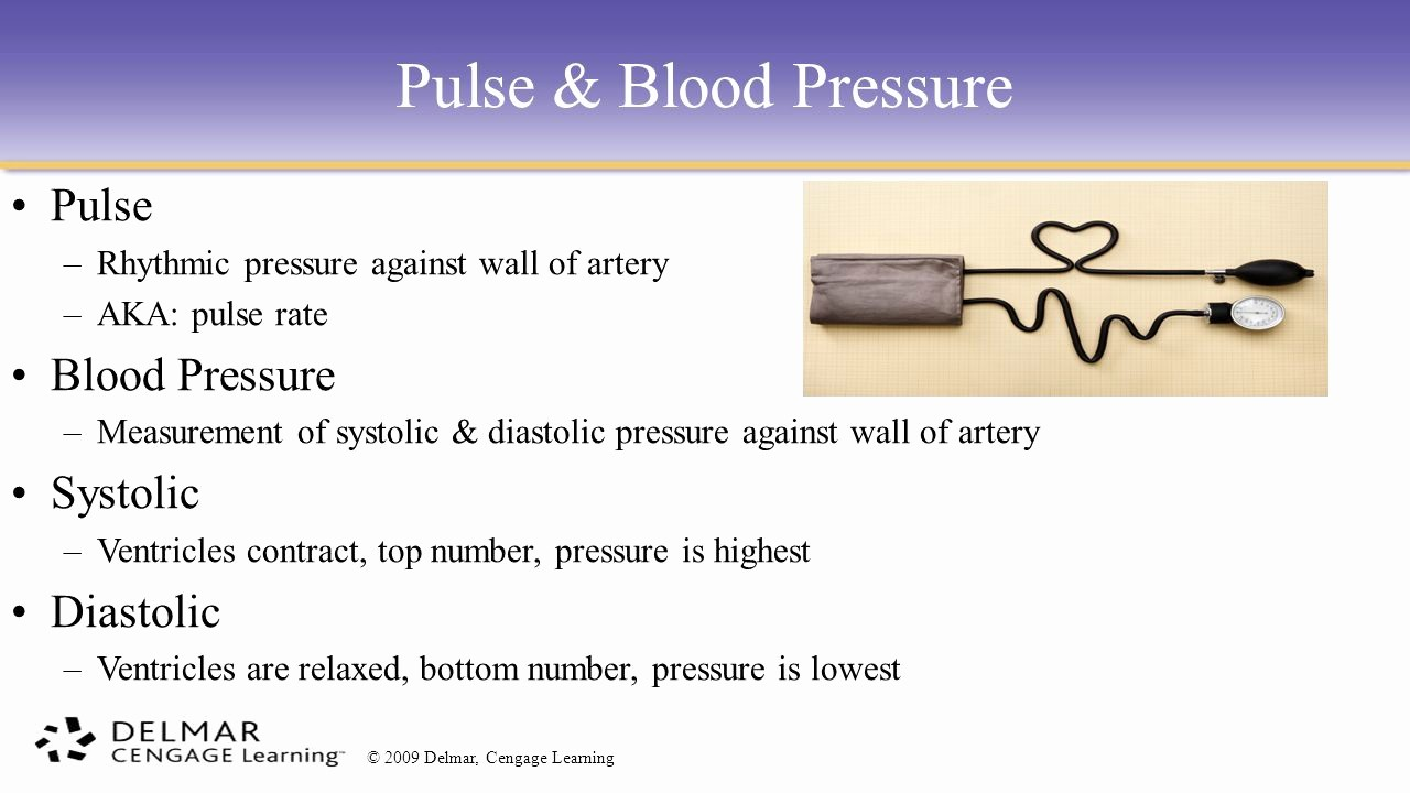 Blood Pressure Log with Pulse Awesome the Cardiovascular System Ppt Video Online