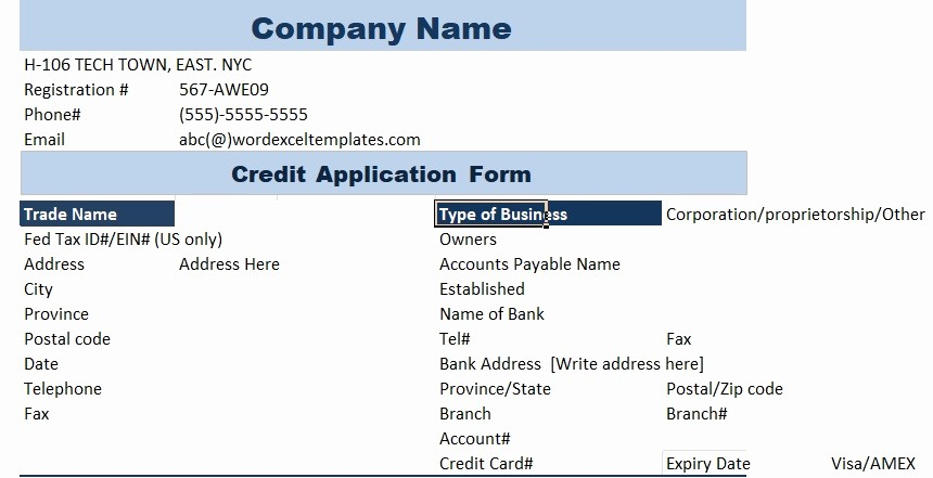 Business Credit Application form Template Awesome 5 Professional Business Credit Application Template Word