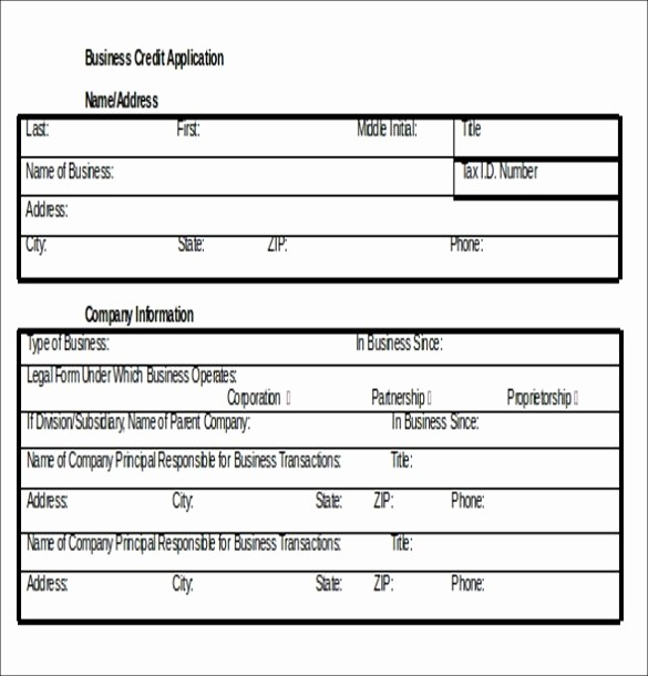 Business Credit Application form Template Awesome Business Credit Application Template Beepmunk