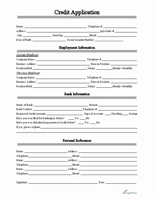 Business Credit Application form Template Beautiful Credit Application form Business forms