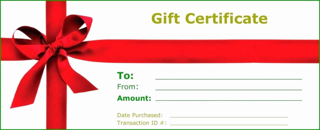 Business Gift Certificate Template Word New Business Gift Certificate Template Word Free Voucher