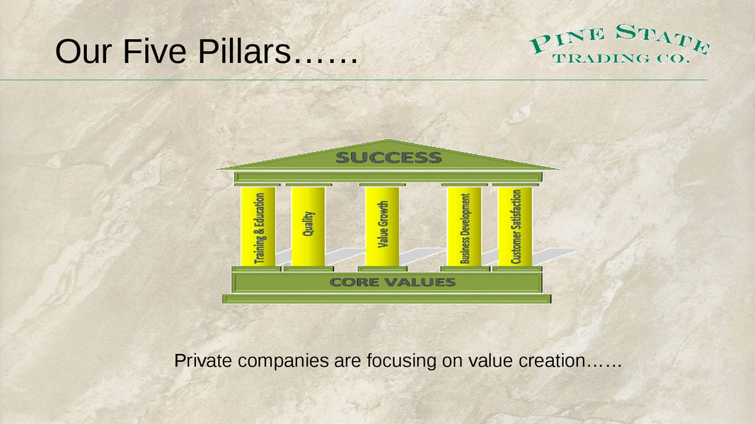 Business P&l Statement Luxury the Cfo and Value Creation