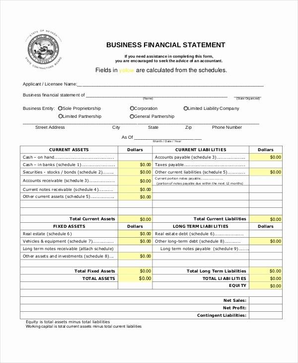 Business P&l Statement Unique Sample Business Financial Statement forms 8 Free