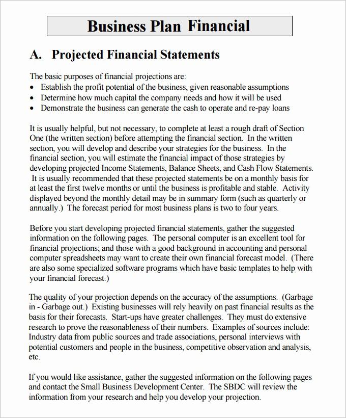 Business Plan Financial Plan Template Elegant Financial Business Plan Templates 10 Premium Word