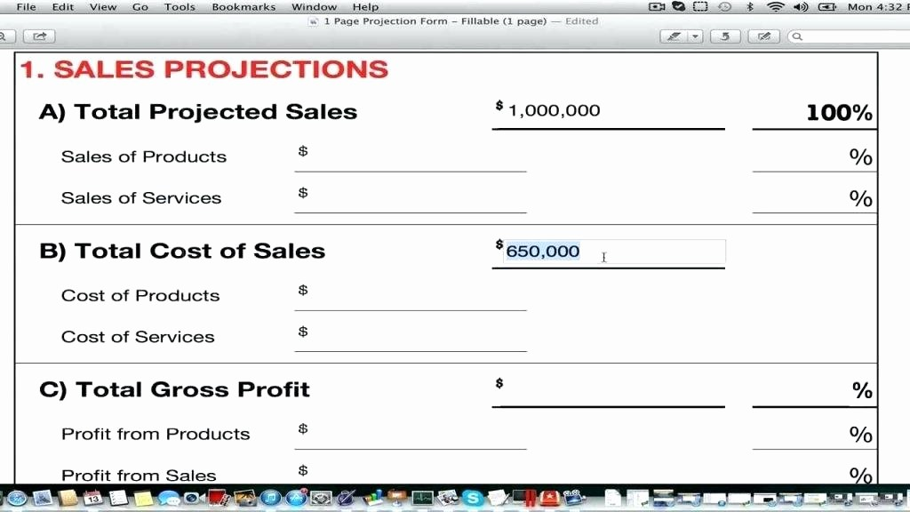 Business Plan Financial Projections Excel Lovely Financial Planner Template – Mysticskingdomfo