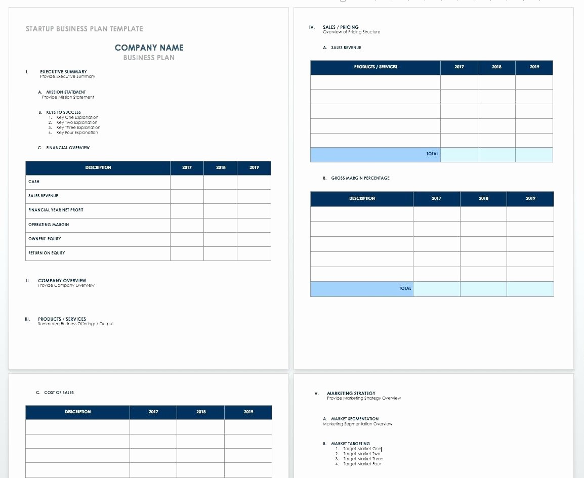 Business Plan Startup Costs Template Lovely Template Microsoft Fice Planner Template