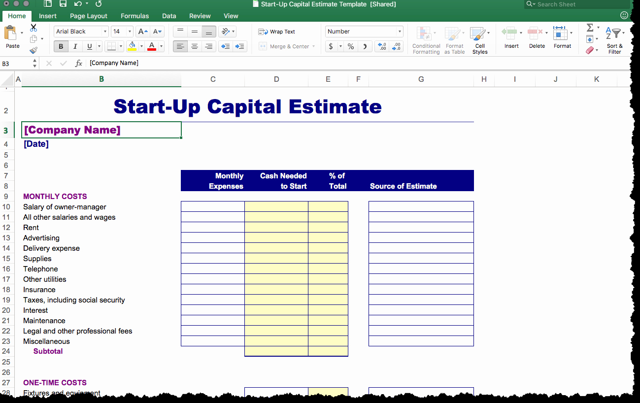 Business Plan Startup Costs Template New Generic Business Plan Template Package