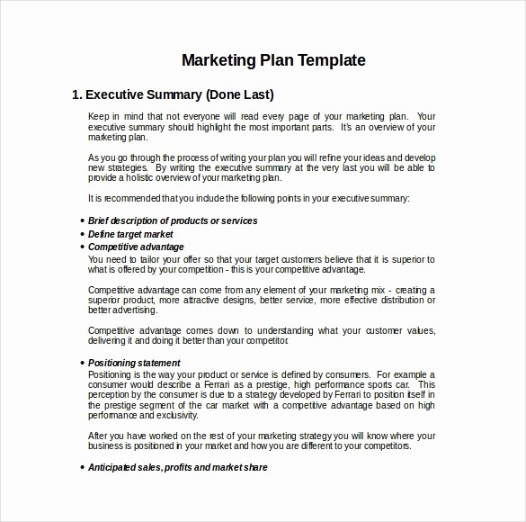 Business Plan Template .doc Best Of 22 Microsoft Word Marketing Plan Templates