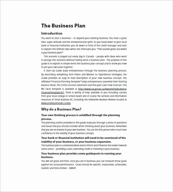 Business Plan Template .doc Lovely Sample Startup Business Plan Template Rusinfobiz