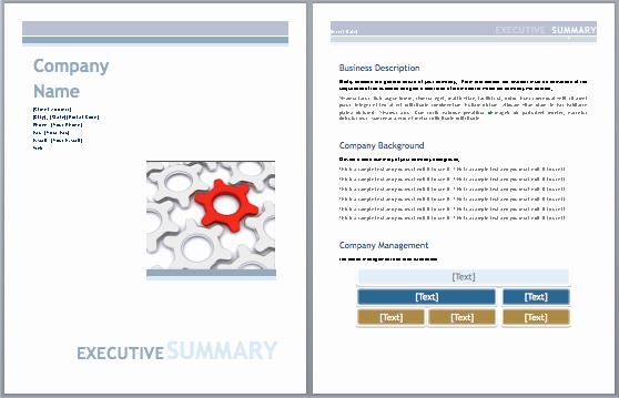 Business Plan Template Microsoft Office Best Of Executive Summary Template Business Plan Microsoft