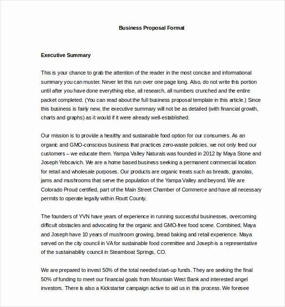 Business Proposal Template Microsoft Word Unique 32 Business Proposal Templates Doc Pdf