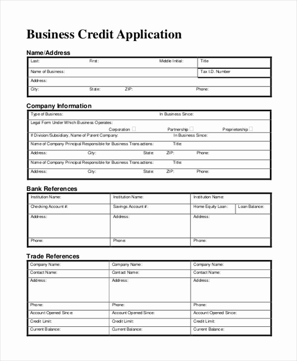Business to Business Credit Application Beautiful Sample Business form 11 Free Documents In Doc Pdf