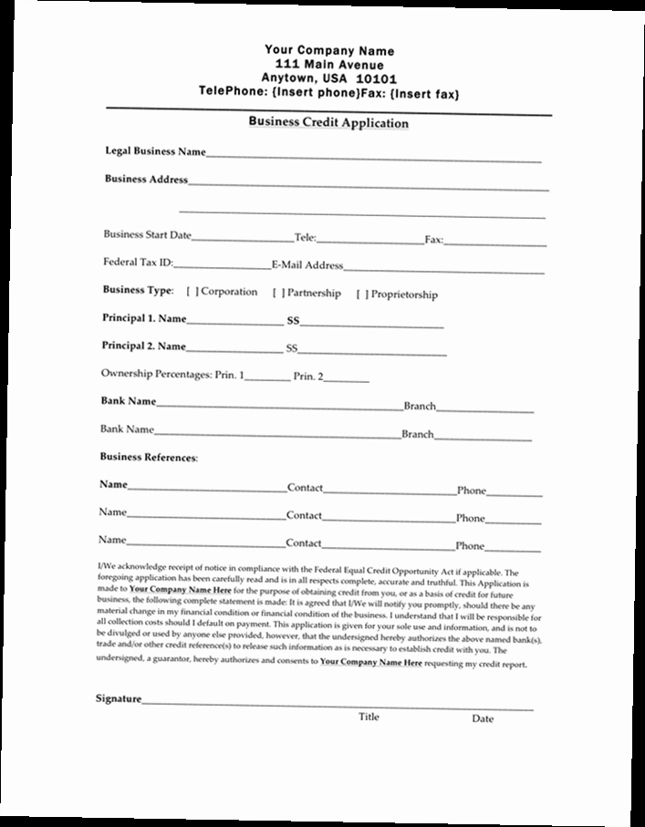 Business to Business Credit Application Best Of Business Credit Application form Pdf