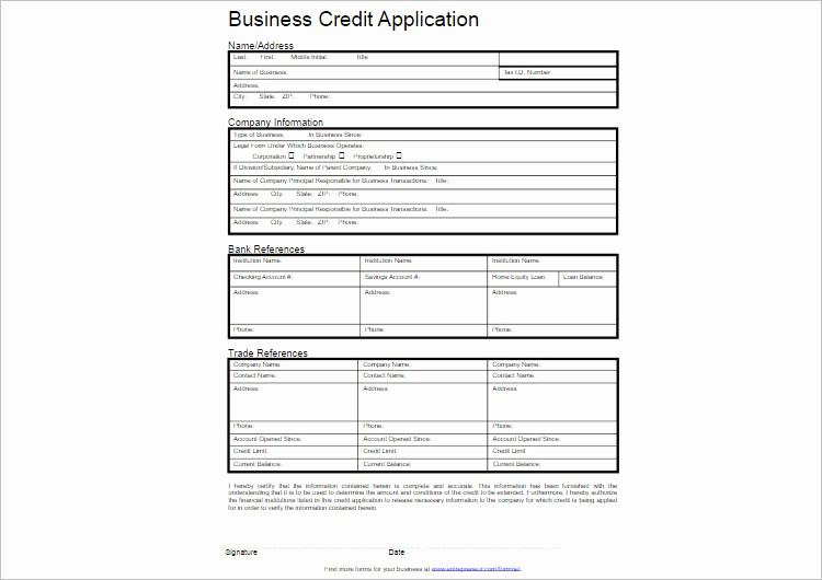 Business to Business Credit Application Lovely 24 Credit Application form Templates Free Word Pdf formats