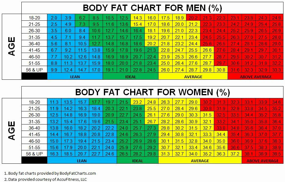 Calculate Fat Percentage In Food Fresh Ideal Body Fat Percentage for Men Over 50 Help Weight
