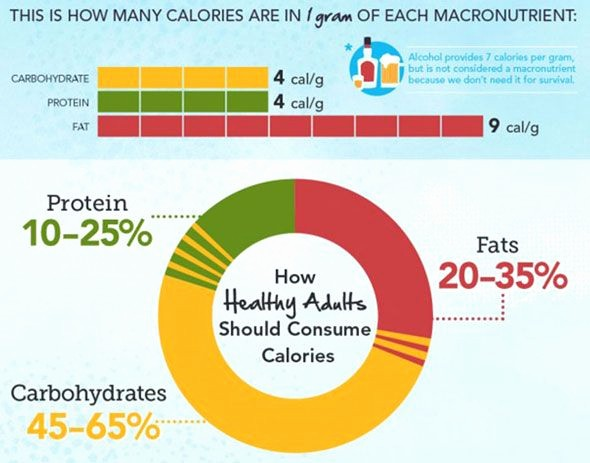 Calculate Fat Percentage In Food Inspirational Carb Protein Fat Calculator Put In Your Own Numbers and