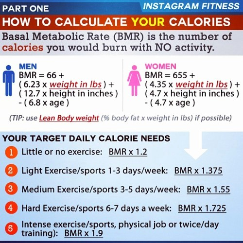 Calculate Fat Percentage In Food Unique Instagram Fitness