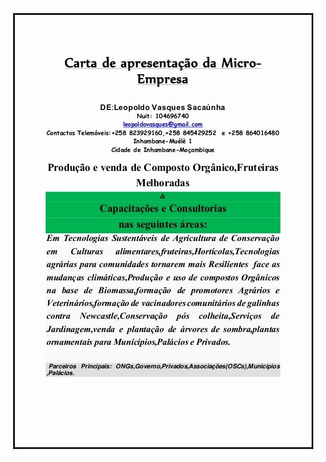 Carta De Apresentação De Empresa Unique Carta De Apresentação Da Empresa Levas