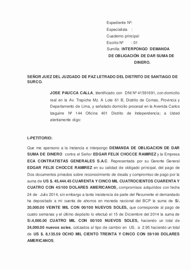 Carta Para Cobrar Una Deuda New Modelo De Demanda De ObligaciÓn De Dar Suma De Dinero