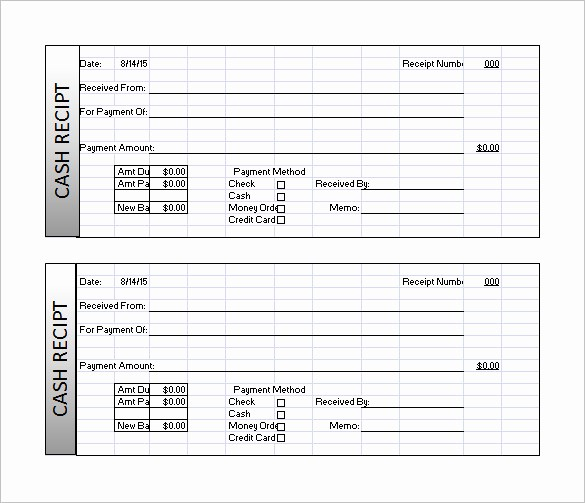 Cash Receipt format In Excel New Receipt Template Doc for Word Documents In Different Types