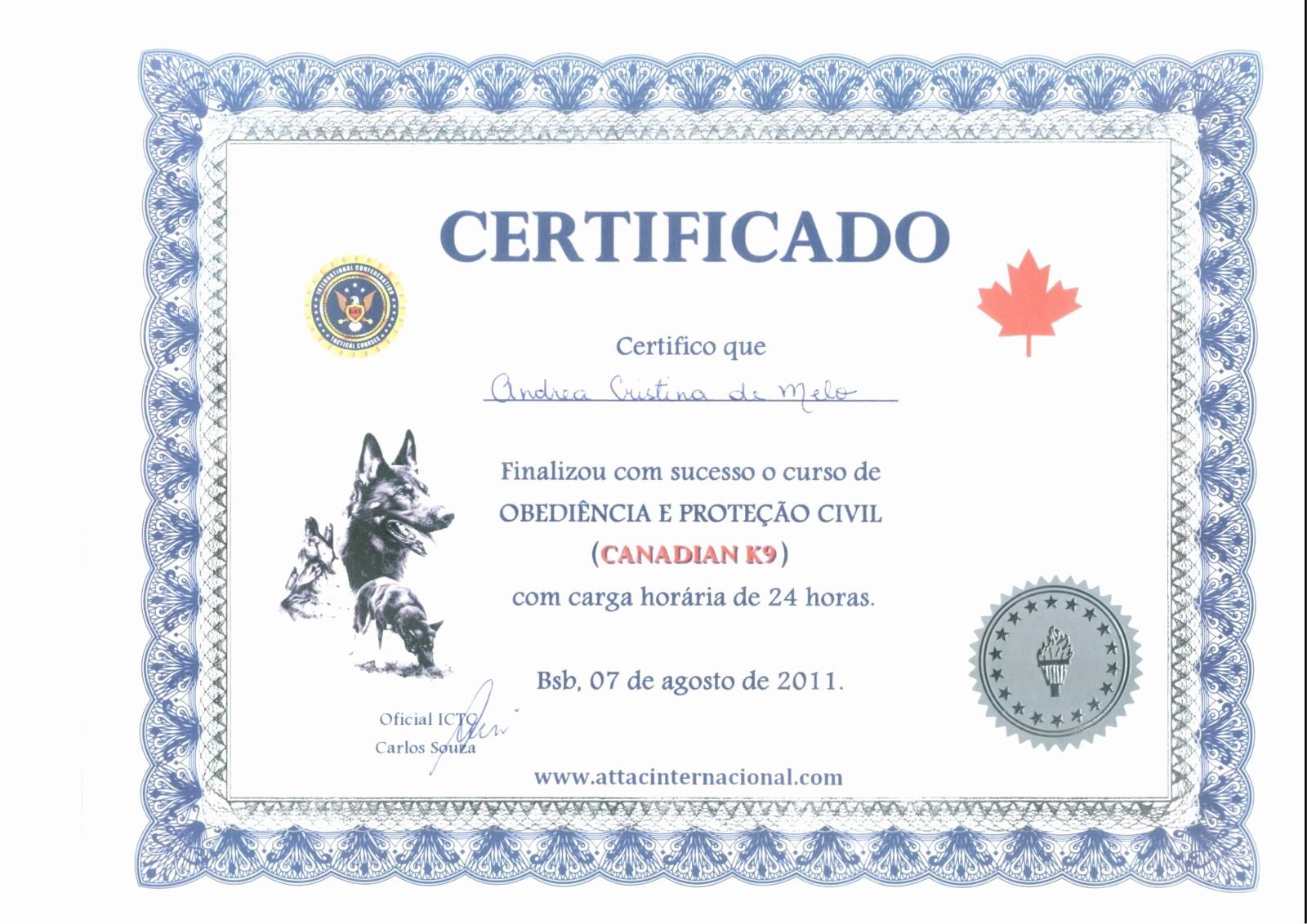 Certificado De Agradecimiento Y Apreciacion Unique Certificado De Agradecimiento Cristiano Related Keywords