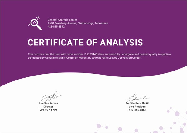 Certificate Of Analysis Template Excel Fresh Certificate Template 62 Free Printable Word Excel Pdf