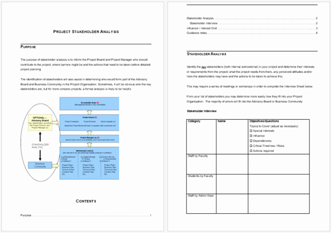 Certificate Of Analysis Template Excel Luxury Stakeholder Analysis Template 13 Examples for Excel