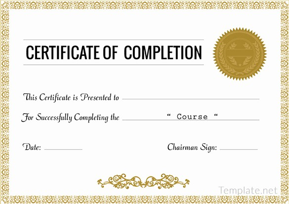 Certificate Of Completion Word Template Lovely 38 Pletion Certificate Templates Free Word Pdf Psd