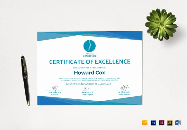 Certificate Of Excellence Template Word New 27 Doctor Certificate Templates Pdf Doc