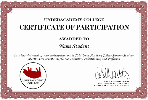 Certificate Of Participation Wording Samples Beautiful Meme On Meme Action