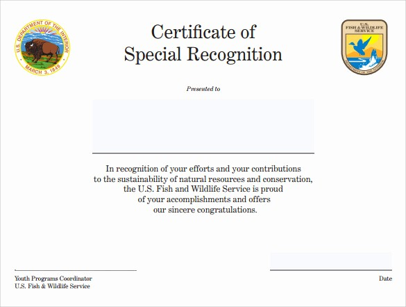 Certificate Of Recognition Template Word New Sample Certificate Of Recognition Template 14 Free