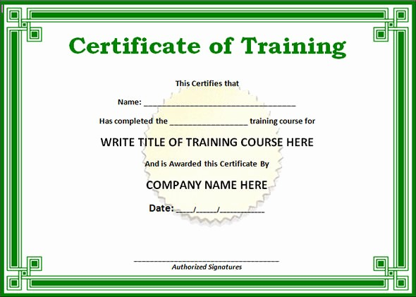 Certificate Of Training Template Word Beautiful Editable Word Doc Training Certificate Template