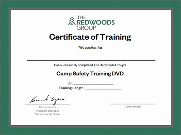 Certificate Of Training Template Word Best Of 20 Training Certificate Templates