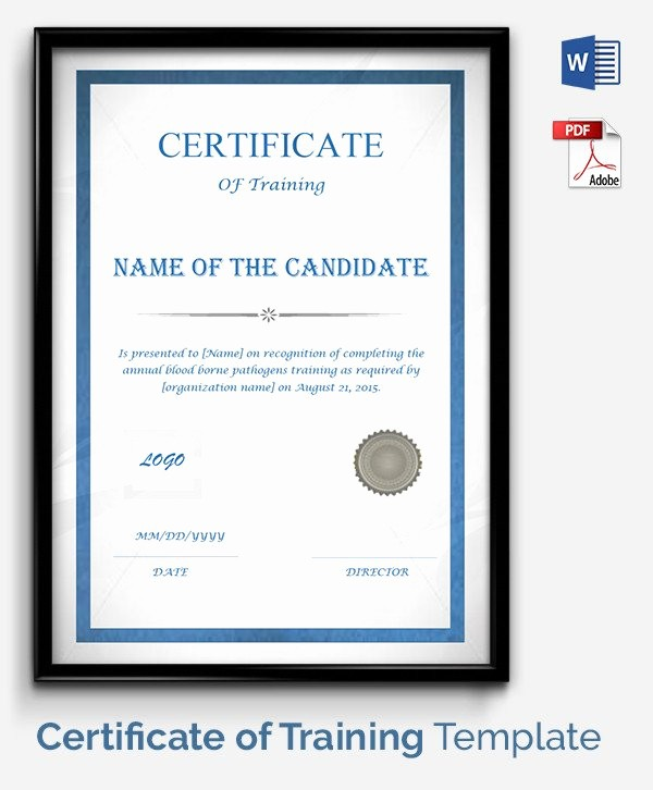 Certificate Of Training Template Word Fresh 52 Free Printable Certificate Template Examples In Pdf