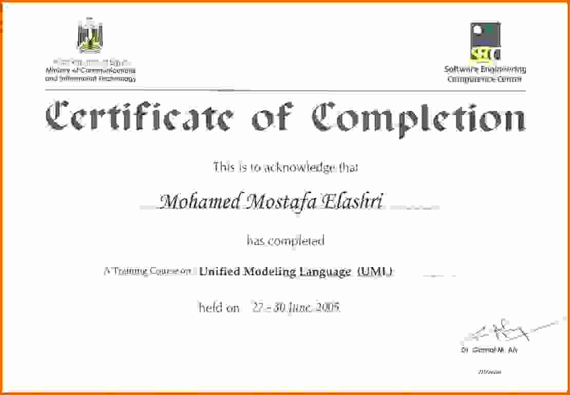 Certificate Of Training Template Word Fresh Certificate Of Training Templatereference Letters Words